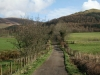 latrigg-walk-1